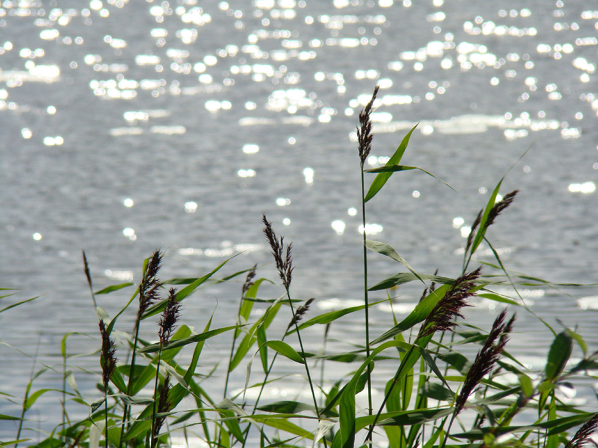 Aavan Meren Tuolla Puolen